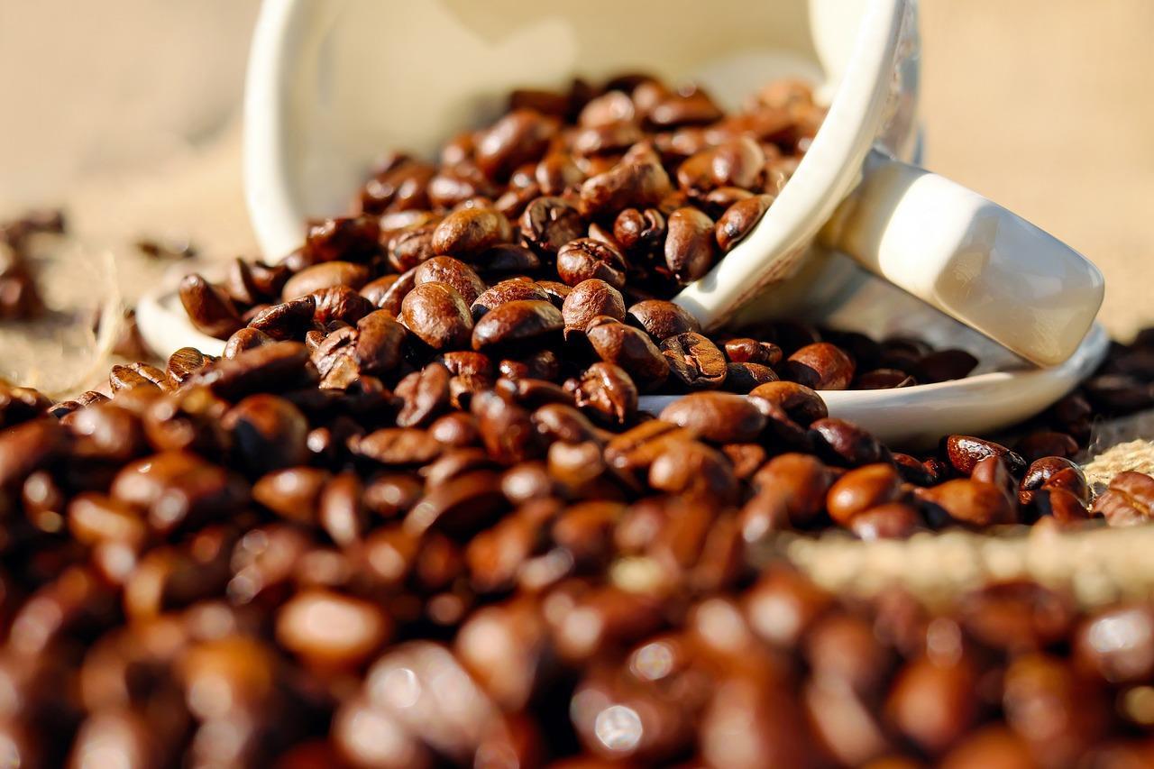 Conheça os tipos de grãos de café | Grão Gourmet